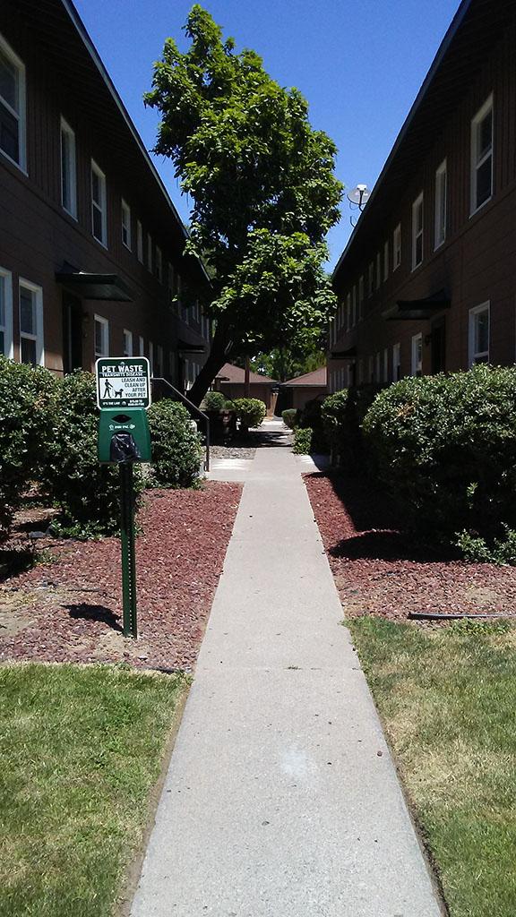 Regina Marie Apartments Reno Nv Apartments For Rent